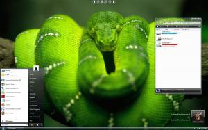 Windows Vista Snake Skin Theme
