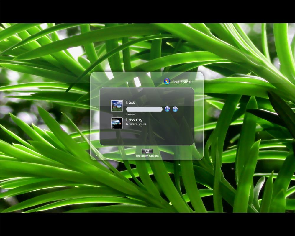 Vista Bush Wallpaper - Free Download